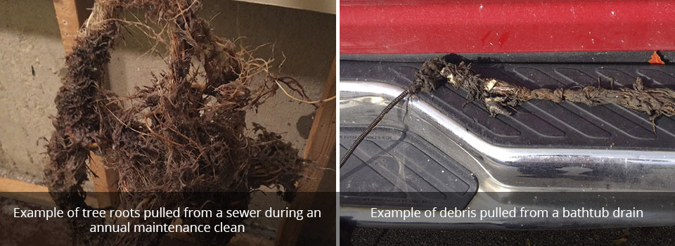 Example of tree roots pulled from a sewer during anannual maintenance clean | Example of debris pulled from a bathtub drain
